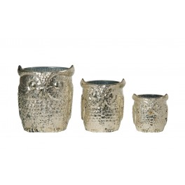 Parliament of owls candle holders in glass