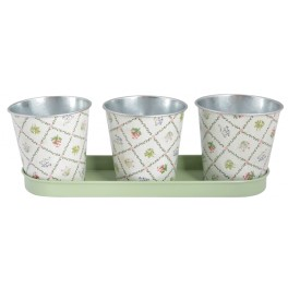 Flower / Herb Pots on a Tray in botanical print
